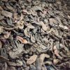 Bildungsfahrt nach Auschwitz - Bericht von Sophie A. (Jugendliche des Kinderheim Herne) und Fotos erstellt durch Fabian Haas (Päd. Mitarbeiter)